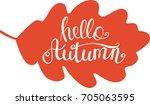autumn turned red oak leaf ... | Shutterstock .eps vector #705063595