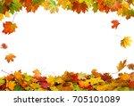 autumn falling maple leaves... | Shutterstock . vector #705101089