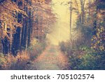 red and colorful autumn colors... | Shutterstock . vector #705102574