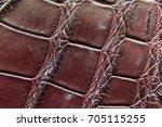 freshwater crocodile belly skin ... | Shutterstock . vector #705115255