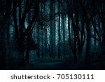 ghost  mysterious woman in the... | Shutterstock . vector #705130111
