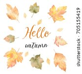 watercolor card of leaves and... | Shutterstock . vector #705155419