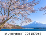 sakura cherry blossom and mt.... | Shutterstock . vector #705187069