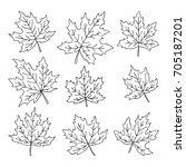 beautiful set of doodle maple... | Shutterstock .eps vector #705187201