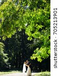 fantastic wedding couple in the ... | Shutterstock . vector #705213901