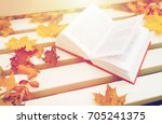 season  education and... | Shutterstock . vector #705241375