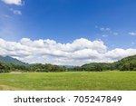 green grass field rural...   Shutterstock . vector #705247849