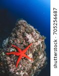 a red star over an underwater... | Shutterstock . vector #705256687