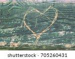 love and romance. heart cut... | Shutterstock . vector #705260431