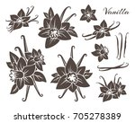 vanilla icons collection.... | Shutterstock .eps vector #705278389