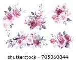 set watercolor flowers. hand... | Shutterstock . vector #705360844