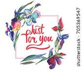 wildflower  iris flower frame...   Shutterstock . vector #705369547