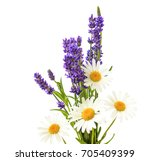 lavender and chamomiles flowers ... | Shutterstock . vector #705409399