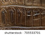 freshwater crocodile belly skin ... | Shutterstock . vector #705533701