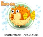 cute cartoon puffer fish on a... | Shutterstock .eps vector #705615001