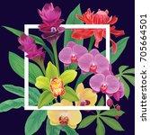 floral pattern with vanda... | Shutterstock .eps vector #705664501
