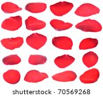 petals of a red rose isolated... | Shutterstock . vector #70569268