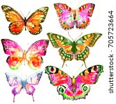 beautiful pink butterfly... | Shutterstock . vector #705723664