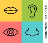 vector illustration nose  ear ... | Shutterstock .eps vector #705770521