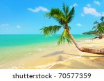 tropical beach with coconut palm | Shutterstock . vector #70577359
