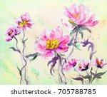 hand painted modern style pink... | Shutterstock . vector #705788785