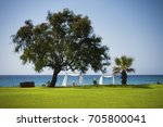 lounge beach in kelibia  tunisia | Shutterstock . vector #705800041