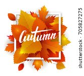 vector autumn leaves typography.... | Shutterstock .eps vector #705827275
