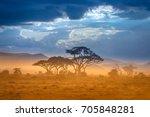 african savannah. the foot of... | Shutterstock . vector #705848281