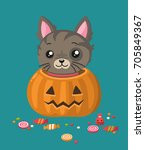 Stock vector icon of a gray striped kitten the cat sits in a pumpkin with a carved face sweets and candies are 705849367
