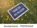 mini blackboard with text thank ... | Shutterstock . vector #705952465