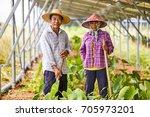 farmers and women laborers... | Shutterstock . vector #705973201