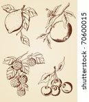 set of vector hand drawn ...   Shutterstock .eps vector #70600015