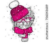 funny dog in a winter hat and... | Shutterstock .eps vector #706043689
