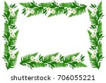 daisies summer flower isolated... | Shutterstock . vector #706055221