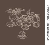 background with almond  almond... | Shutterstock .eps vector #706100614