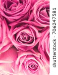Stock photo pink roses background 706247581