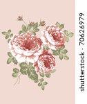 hand drawn   beautiful rose...   Shutterstock . vector #70626979
