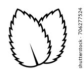 two peppermint   spearmint mint ... | Shutterstock .eps vector #706277524