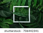 creative layout made of leaves... | Shutterstock . vector #706442341