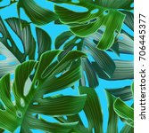 tropical palm leaves. seamless... | Shutterstock . vector #706445377