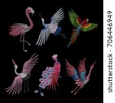 set of cranes and peacock.... | Shutterstock .eps vector #706446949