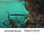 the real mermaid is resting on... | Shutterstock . vector #706472929