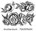vector collection set of... | Shutterstock .eps vector #706509604
