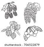 illustration on white...   Shutterstock .eps vector #706522879