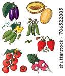 illustration on white...   Shutterstock .eps vector #706522885
