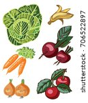 vegetables and fruits on white... | Shutterstock .eps vector #706522897