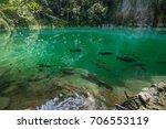amazing emerald pool in lampang ... | Shutterstock . vector #706553119