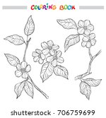 spring garden branches with... | Shutterstock .eps vector #706759699