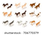 vector set of dog isometric... | Shutterstock .eps vector #706770379