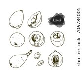 hand drawn sketch loquat fruit... | Shutterstock .eps vector #706784005